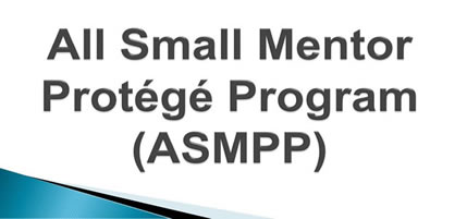 All Small Mentor Protege Program